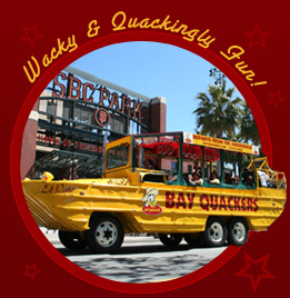 Bay Quackers Duck Tour