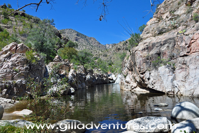 Hutch's Pool, Sabino West Fork Trail