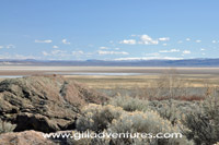 Alvord Desert view from Pike Creek