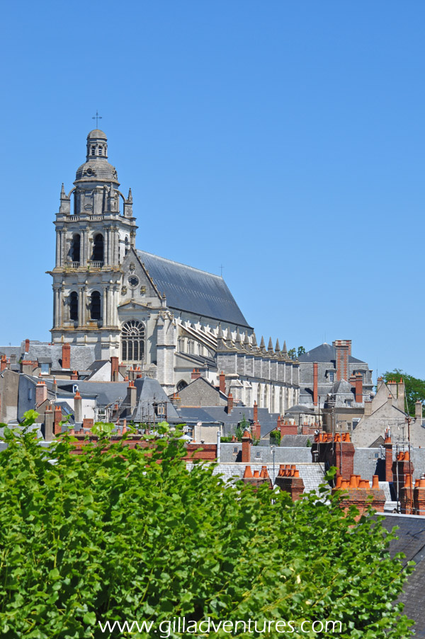We loved this view of the flying buttresses of the Cathedral Saint-Louis de Blois from the area in front of the castle.