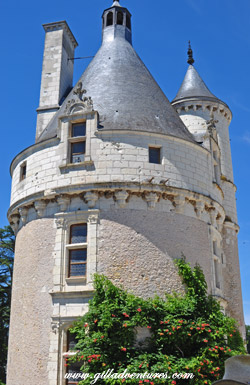 The tower in the front of the Chateau Chenonseau, sheltering the nests of swallows.