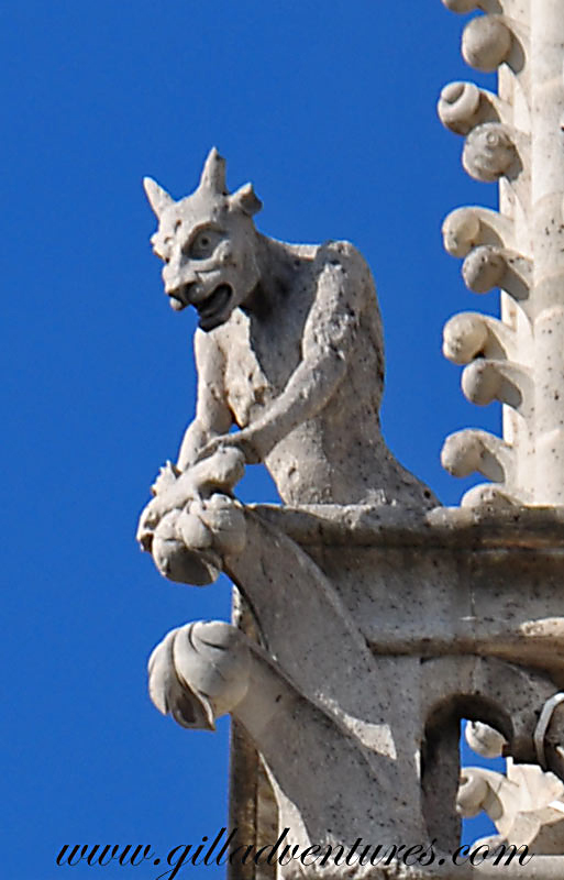 Gargoyles-of-Notre-Dame-2