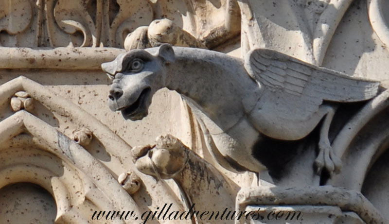 Gargoyles-of-Notre-Dame-3