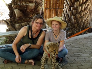 An encounter with a cheetah cub