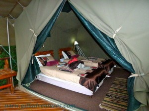 The tent bedroom of the tree house where we stayed during our trip around the world.