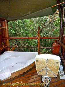 The bathroom of our tree house