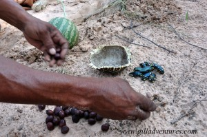 Nuts and beetles for our meal with the San in the Kalahari