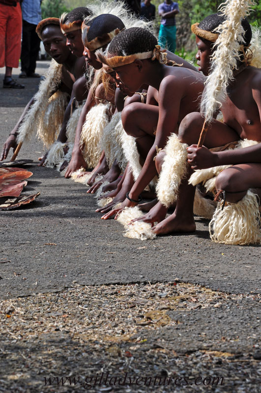 Zulu dancers, South Africa, in the Drakensberg region of KwaZulu Natal