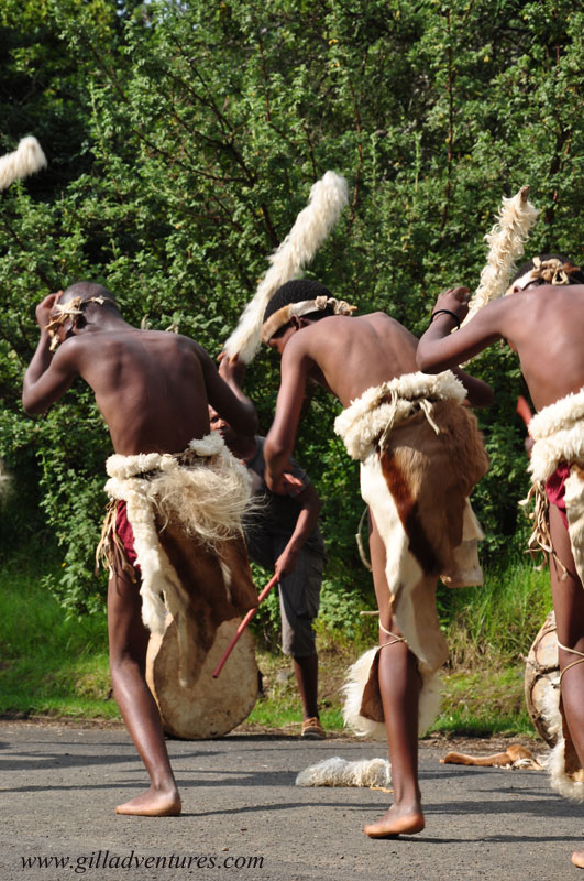 Zulu dancers, KwaZulu Natal, South Africa