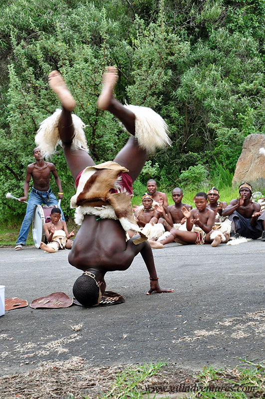 Zulu dancer, KwaZulu Natal, South Africa